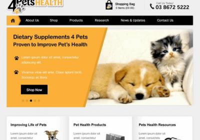 Website Design by Professionals